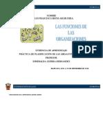 Práctica de planificación de las áreas funcionales.docx