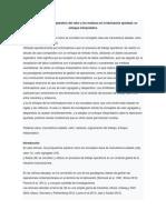 Concepciones y Uso Operativo Del Valor y Los Residuos en La Fabricación Ajustada