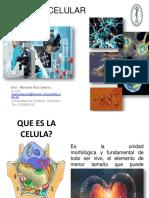 Biologia Celular 1325vpdf
