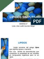 27 Lipidos Simples 2019