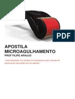 APOSTILA MICROAGULHAMENTO