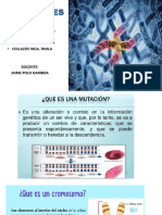 Mutaciones Expo
