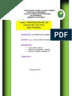INTRODUCCION CULTIVO.docx