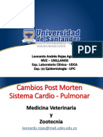 4.Cambios Post Mortem Sistemas II