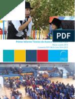 Informe Consejo Nacional de La Cultura y Las Artes