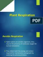 NSB BOT 20 Plant Respiration