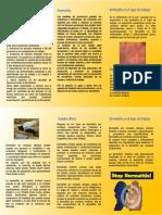 DERMATITIS 1.pptx