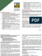 Nutrafol Fertilizante Arroz-Ver3
