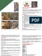 NUTRAFOL Enraizante y Desbloqueador de Suelos EDAFIX-21-Ver4