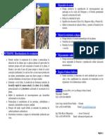 Nutrafol Bioestimulante Diptico - Old