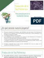 Taq Polimerasa - Procariontes 2019