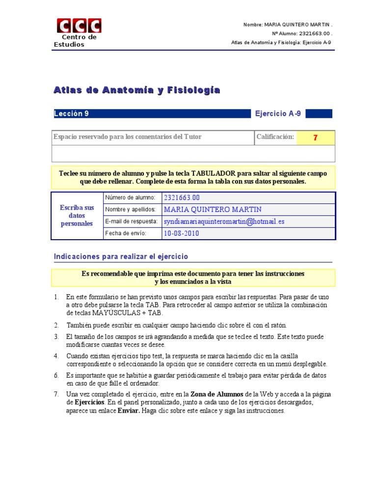 Asombroso Anatomía Y Fisiología Cuaderno De Trabajo Respuestas ...