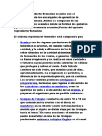 APARATO.docx