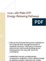 How Cells Make ATP.pptx