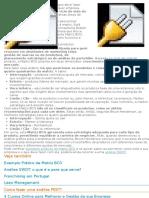 Manual 5650 Gestao e Estrategias