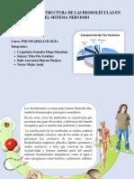 Funciones y Estructura de Las Biomoléculas en El Sistema Nervioso 3