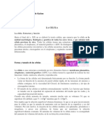 CELULA Apuntes Dra Maldonado.docx
