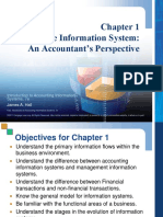 Chapter one an accounting perspective