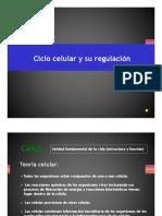 3. Ciclo Celular y Herencia