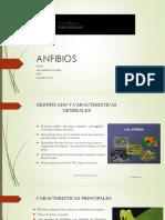ANFIBIOS.pptx