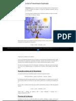 La Fórmula de La Fotosíntesis Explicada