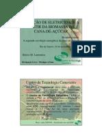 Geracao EE Biomassa Cana Lamonica BNDES 2005