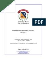 Determinacion Geoformas Litologias LOZANO