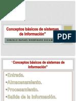 Conceptos Básicos de Sistemas de Información