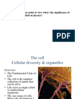 Cellular Diversity (Lec, 4)