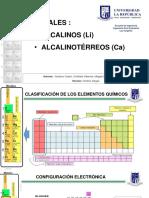 Presentacion Li-CA Rev1