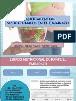Gestación y Nutrición