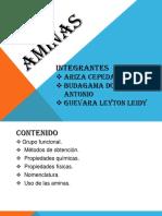 aminas_quimica.pptx