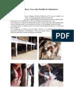 Caso_clinico_paralisis_de_obturadores.doc