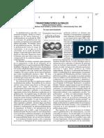 Transformaciones Globales. Política, Economía y Cultura de David Held, Anthony McGrew, Et Al. (Reseña) - Juan Carlos Bustamente