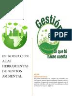 gestion ambiental entregar