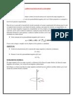 CAMPOS MAGNETICOS ESTACIONARIOS.docx