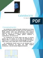Caleidociclo