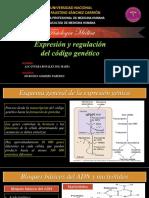 Alcantara - Expresión Genetica