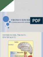 TRONCO ENCEFALICO.pptx