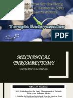 terapia endovascular