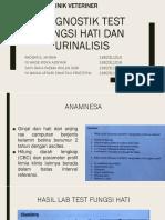 Chemistry Dan Urinalisis Revisi Lengkap