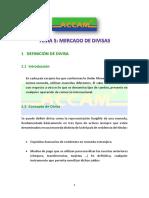5Mercado Divisas ACCAM Format