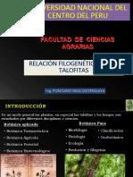 4. Relacion Filogenetica de Las Talofitas