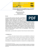 Dinâmicas Territoriais e Impactos Socioambientais Na Amazônia