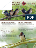 How to Be a Good Barn Swallow Host