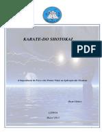 Karate-do Shotokai Pontos Vitais