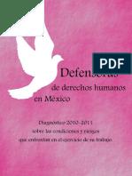 diagnostico defensoras 2010-2011.pdf