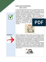 RECOPILACIÓN DE INFORMACIÓN.docx