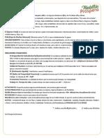 Glosario YSR-YSP.pdf