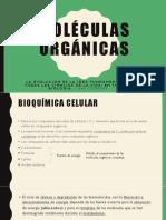 Moléculas Orgánicas Expo